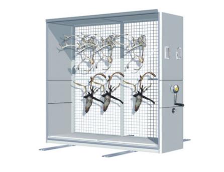 动物标本密集柜